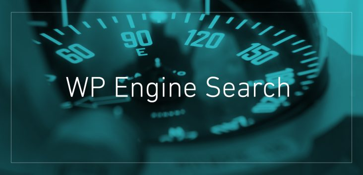wp-search
